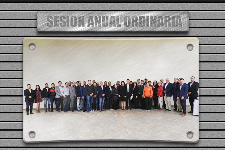Sesión anual ordinaria