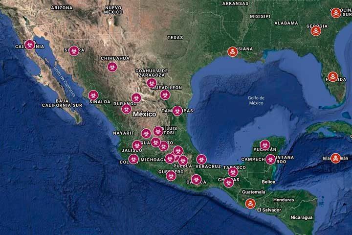 Mapa del Covid-19 en tiempo real
