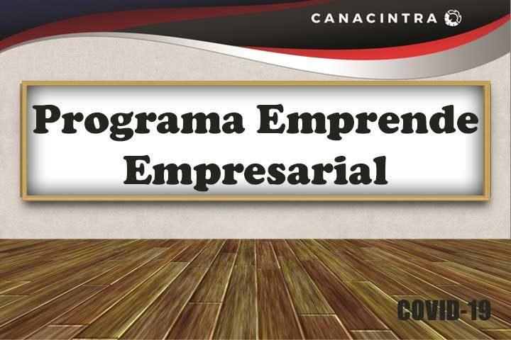 EMPRENDE EMPRESARIAL PROGRAMA  DE  APOYO