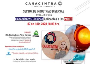 LINEAMIENTOS TÉCNICOS APLICABLES A LAS PYMES @ Vía ZOOM